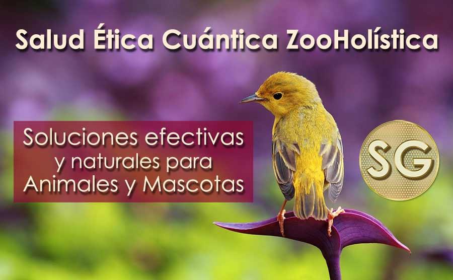 Salud Ética Cuántica ZooHolística. Terapia Natural para animales y mascotas